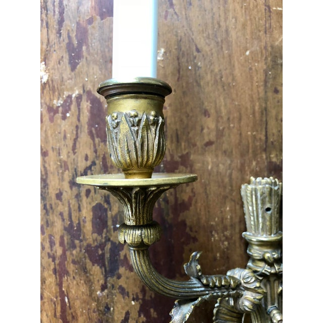 Neoclassical Brass Two Light Wall Sconces- a Pair For Sale - Image 4 of 6