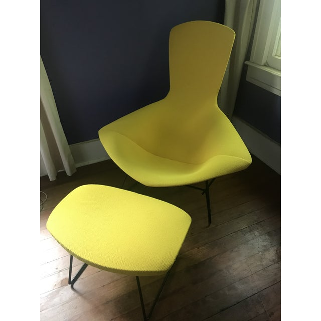 Knoll Knoll Bertoia Bird Chair & Ottoman For Sale - Image 4 of 4