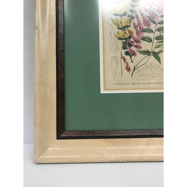 19th Century English Floral Print For Sale - Image 4 of 6