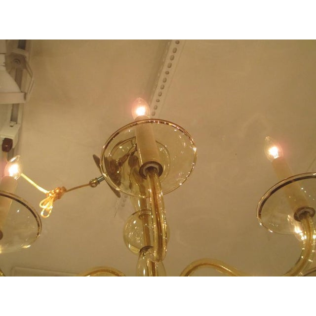 Eight Arms Amber-Colored Murano Glass Chandelier For Sale In New York - Image 6 of 7