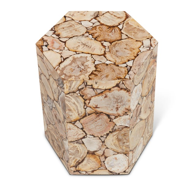 Mid-Century Modern Hexagon Petrified Wood Stool, Natural Light For Sale - Image 3 of 6
