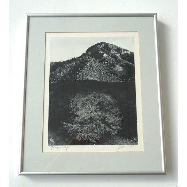 "Framed ""Huachaca Canyon"" Photograph - Image 2 of 5"