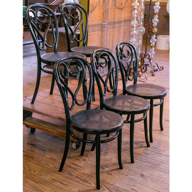 Set of Five Bentwood Bistro Chair For Sale In Houston - Image 6 of 7