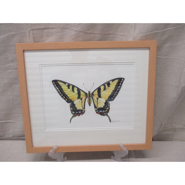 Yellow Western Tiger Swallowtail Butterfly Watercolor by Mary Ann Ho For Sale - Image 8 of 8