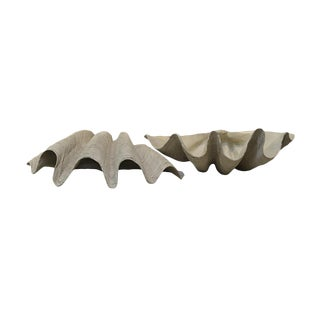 Clam Shell Table Top Planter For Sale