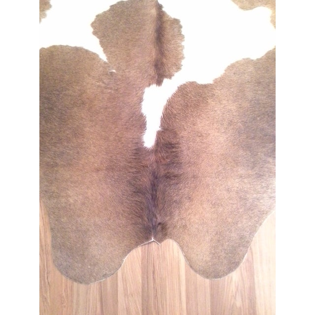 French Country Authentic Cow Hide Rug - 5′11″ × 6′11″ For Sale - Image 3 of 7