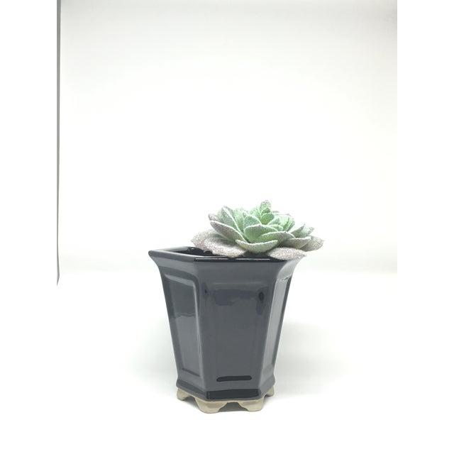 Vintage Hand-Glazed Asian Planter - Image 7 of 7