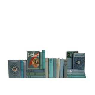An Ocean of Vintage Reading - Set of Twenty Decorative Books