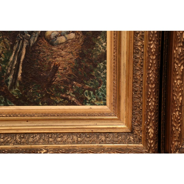 Pair of 19th Century French Birds Oil Paintings in Gilt Frames Signed Delor For Sale In Dallas - Image 6 of 9