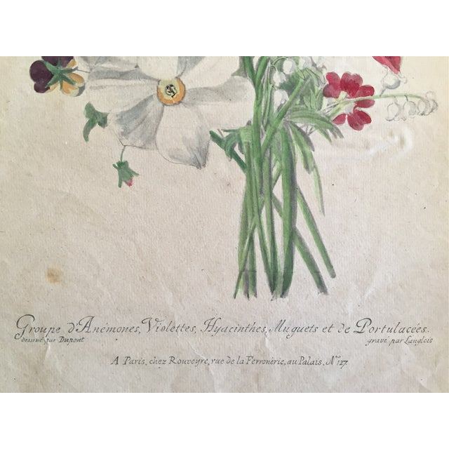 Antique French Floral Botanical Print For Sale - Image 4 of 6