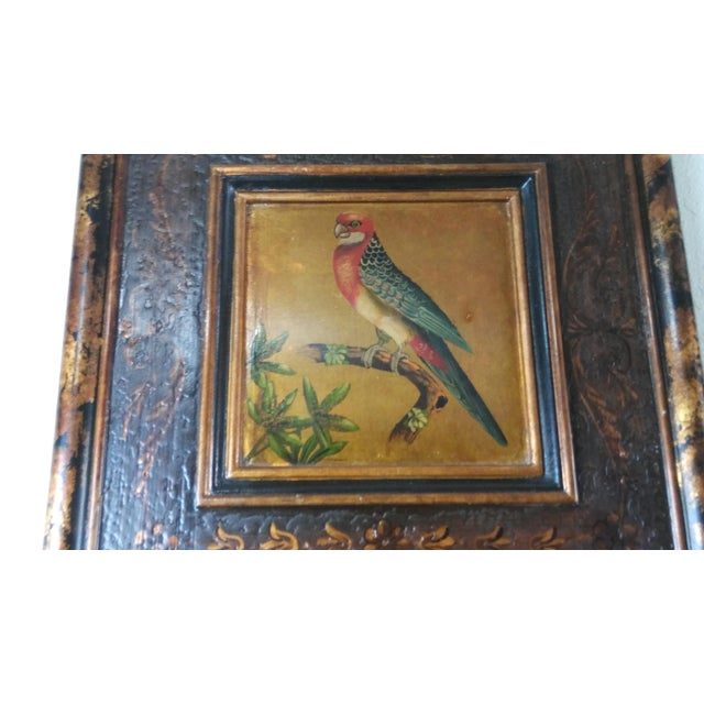 Castilian Imports Tropical Birds Wood Wall Plaque Panels - A Pair For Sale - Image 4 of 10
