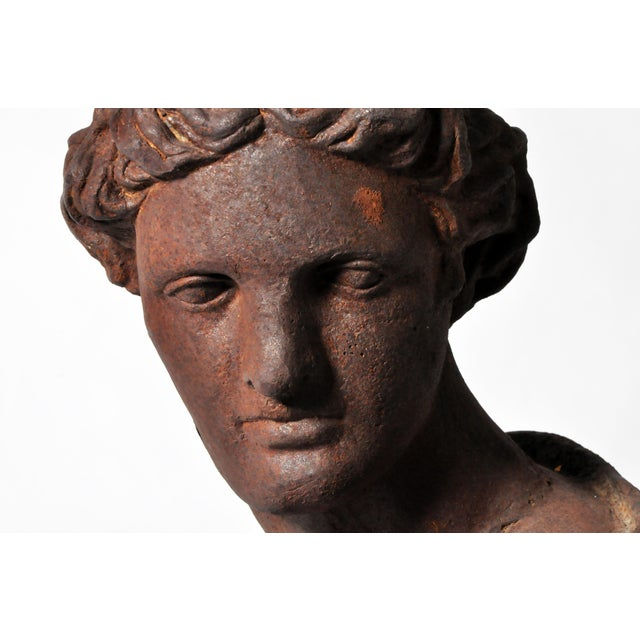 Iron Bust of Apollo Belvedere - Image 11 of 11