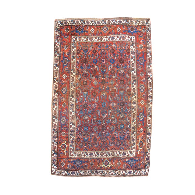 Bidjar Rug - 3′9″ × 6′3″ For Sale