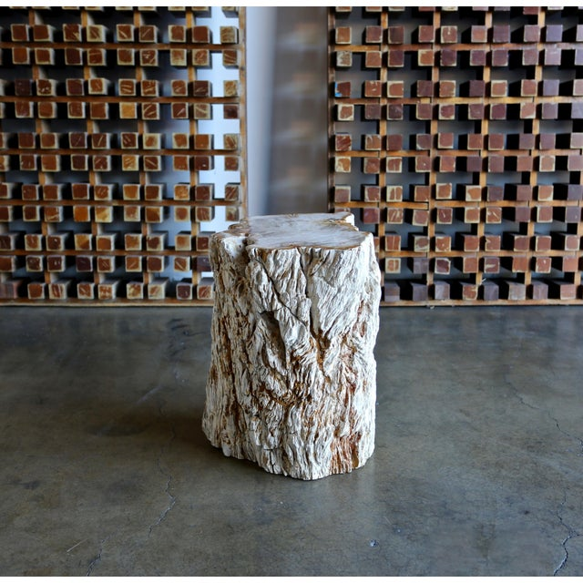 Petrified Wood Side Table For Sale - Image 12 of 12