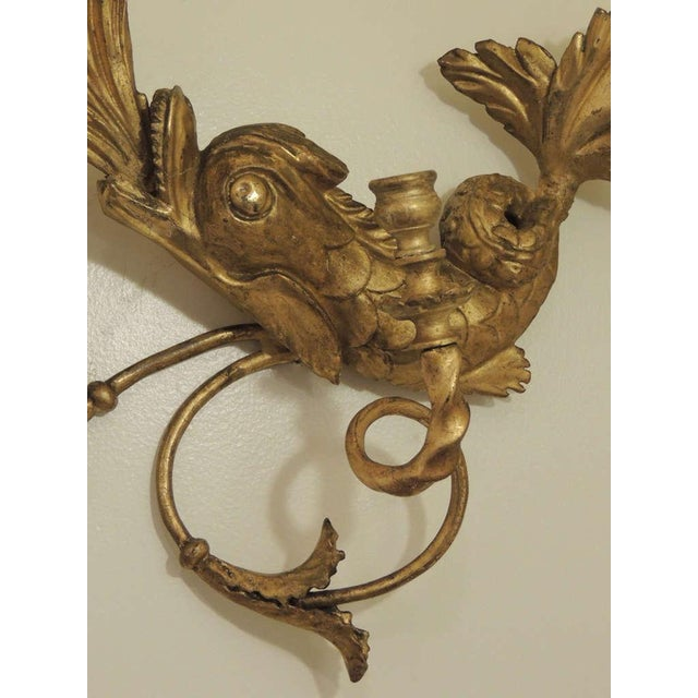 Mid 19th Century Early 19th C American Dolphin Giltwood Sconces For Sale - Image 5 of 9