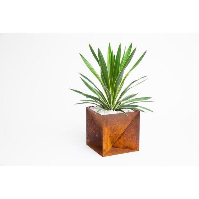 Trey Jones Studio Weathering Steel Origami Planter For Sale - Image 10 of 10
