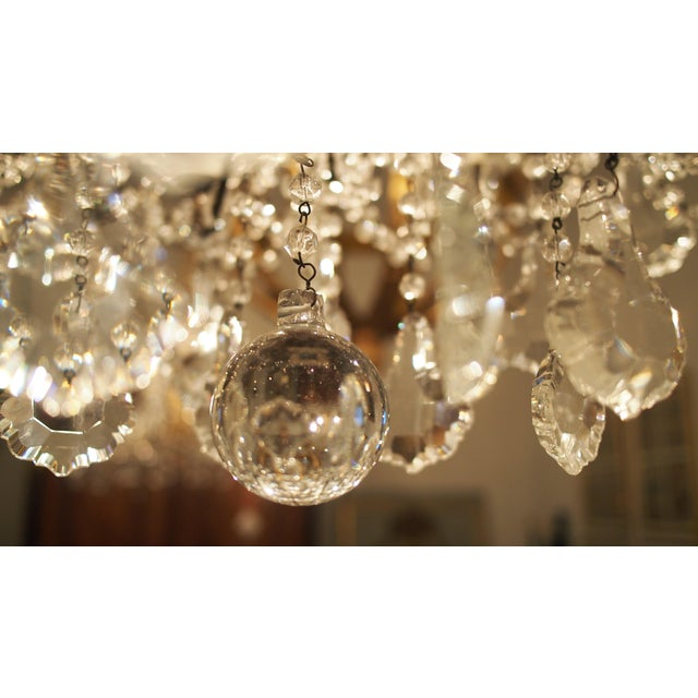 Eight Light Crystal Chandelier with Flowers on Beaded Stems For Sale In New Orleans - Image 6 of 10