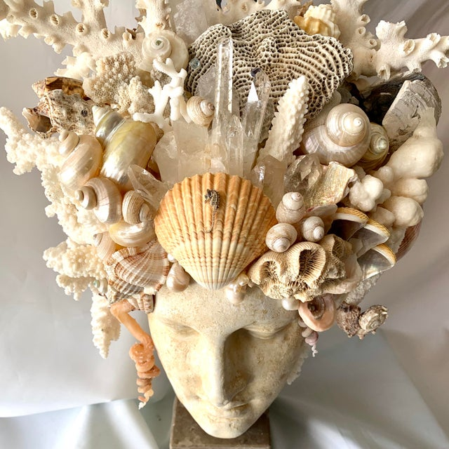 Sand Large Shell Hygiea Bust For Sale - Image 8 of 12