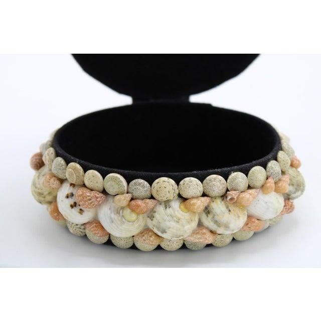 Mid 20th Century Vintage Organic Seashell Jewelry Treasure Box For Sale - Image 10 of 12