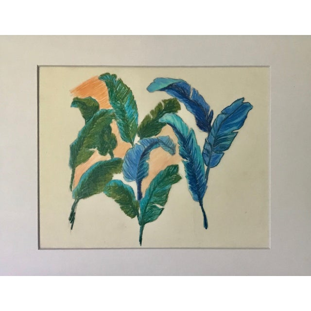 An original vintage pastel drawing of colorful tropical bird feathers. Pastel on thin tissue like paper matted and framed.