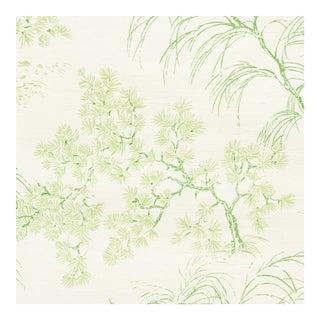 Schumacher Mori Sisal Wallpaper in Leaf For Sale