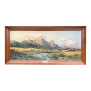 Flowering Meadow Framed Print by Haller For Sale