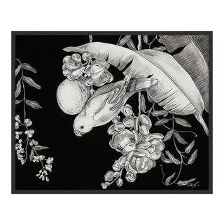 Serenade by Allison Cosmos in Black Framed Paper, Medium Art Print For Sale