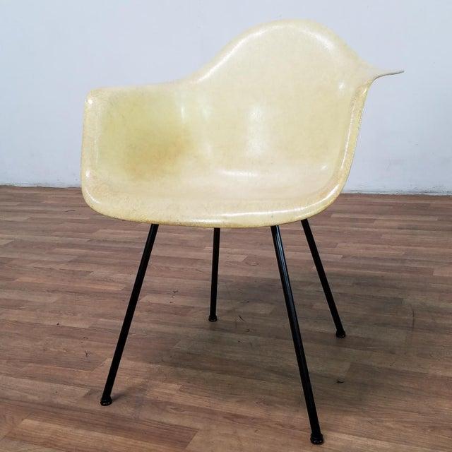 Danish Modern 1950s Danish Modern Charles & Ray Eames for Zenith Plastics Fiberglass Chair For Sale - Image 3 of 13