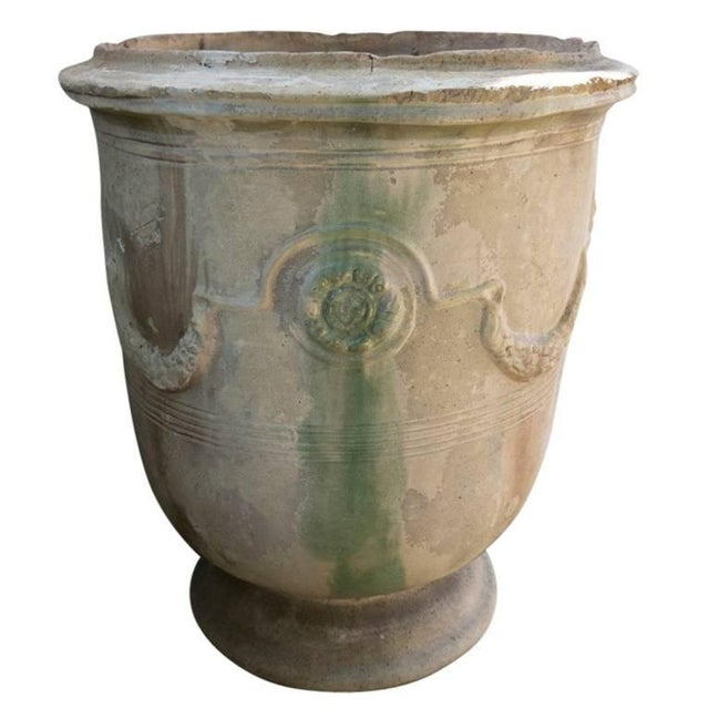 Late 19th Century 19th Century Grand Anduze Jars For Sale - Image 5 of 13