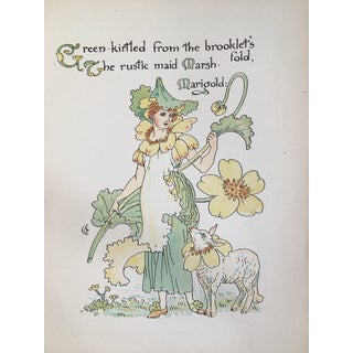 Late 19th Century Antique Marsh Marigold Alphabet Flower Lithograph Print For Sale