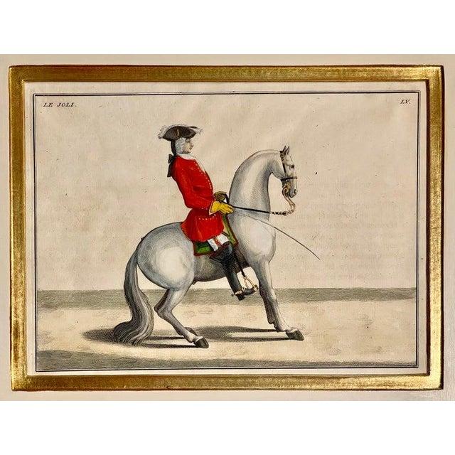 Folk Art Four Engravings of Horse Riders L' Aimable, Le Joli, Le Sanspareil, Le Poupon For Sale - Image 3 of 11