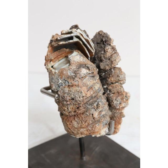 18th Century Cau Mau Shipwreck Porcelain Clump For Sale - Image 4 of 8