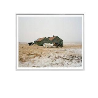 "Eden Batki ""Pastel Snowstorm"" Unframed Photographic Print For Sale"
