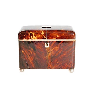 Early 19th Century English Regency Tortoiseshell Tea Caddy For Sale