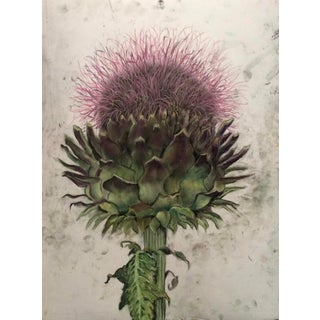 Thistle Contemporary Drawing For Sale