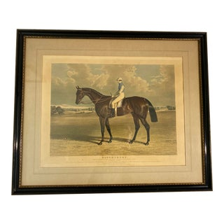 19th Century English Horse Engraving Print For Sale