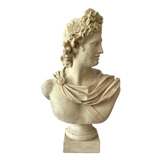1960s Bust of Belvedere Sculpture For Sale