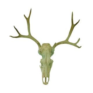 Weathered Bull Skull With Deer Antlers
