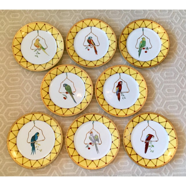 Chelsea House Decorative Tropical Bird Parrot Plates - Set of 8 For Sale - Image 10 of 10