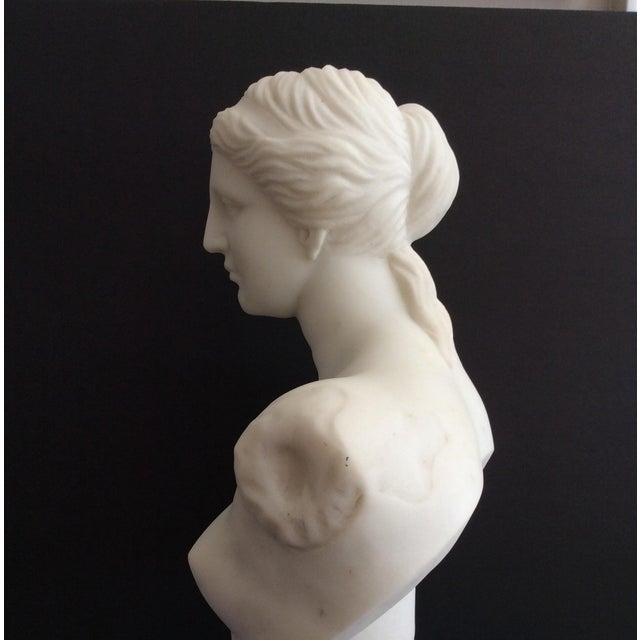 19th Century Venus De Milo Marble Bust For Sale - Image 4 of 12