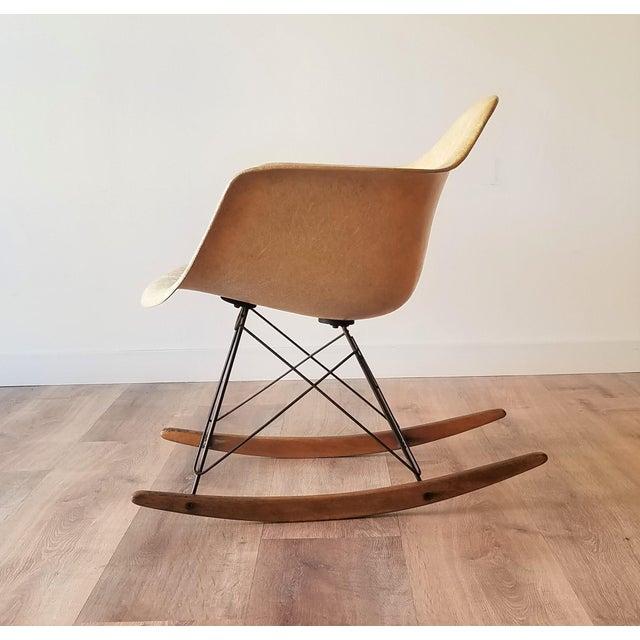 Mid-Century Modern 1960s Eames RAR Rocking Chair in Ochre Light for Herman Miller For Sale - Image 3 of 13