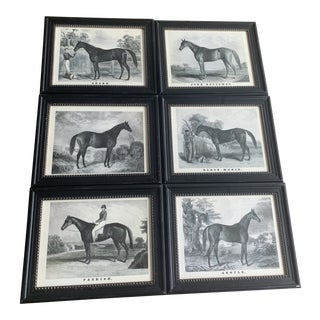 English Library Horse Prints - Set of 6 For Sale
