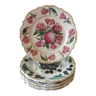 French Botanical Fruit Plates - Set of 6 For Sale