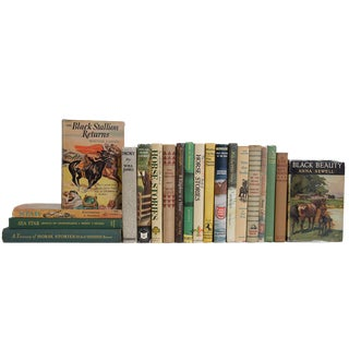 Midcentury Children's Horse Book Set, (S/20) For Sale