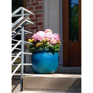 Blue Flower Pot Photograph by Josh Moulton For Sale