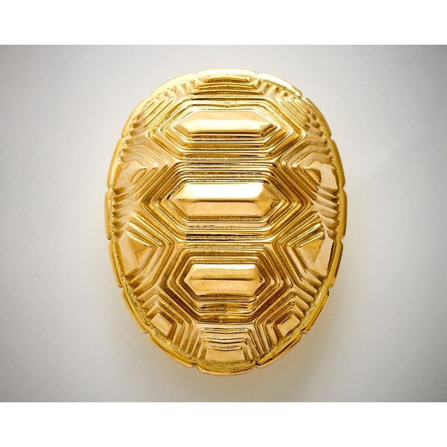 Nest Studio Collection Tortoise Polished Brass No Lacquer Handle For Sale - Image 4 of 4