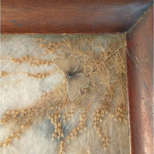 Antique Arts & Crafts Milkweed & Real Butterflies Serving Tray For Sale - Image 4 of 10