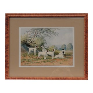 C. 1880 Fox Terriers Original Chromolithograph