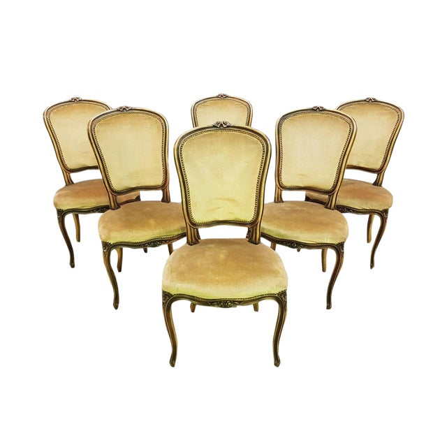 4f9b8f68bc3b6 Vintage Set of Six French Louis XV Style Long Back Dining Chairs Velvet  Beige Gold Original Upholstery