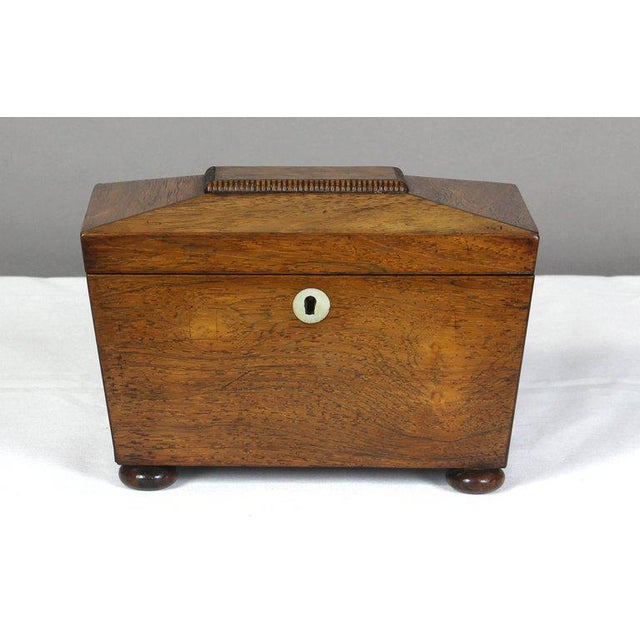 Regency Mahogany Sarcophagus Form Tea Caddie For Sale - Image 10 of 11